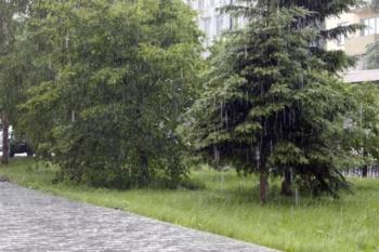 Ливневые дожди, грозы и град ожидаются в Иркутской области 30 июля